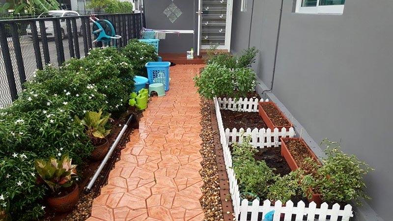 Introducing newbies to gardening